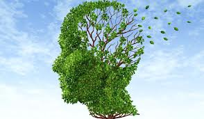 Dementa Alzheimer