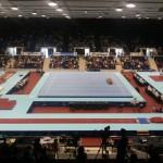 Psihologia Sportului gimnastica